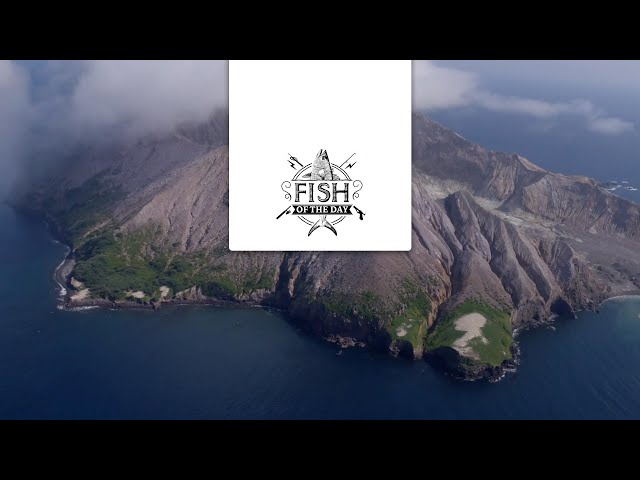 FISH OF THE DAY Saison 2 Episode 4 – Après la plongée, place à la pêche sur White Island
