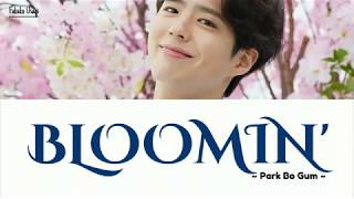 Park Bo Gum-Bloomin' Lyrics