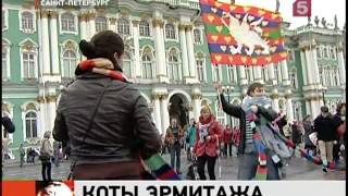 В Петербурге отмечают День эрмитажного кота / 5 канал