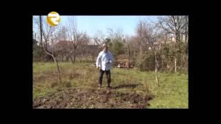 Hasil və Məxrəc - Qonşu üçün qəmbərqulu - Prikol 2