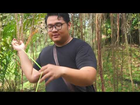 A Day With YoYo Featuring Jeremy Kuyah Liang