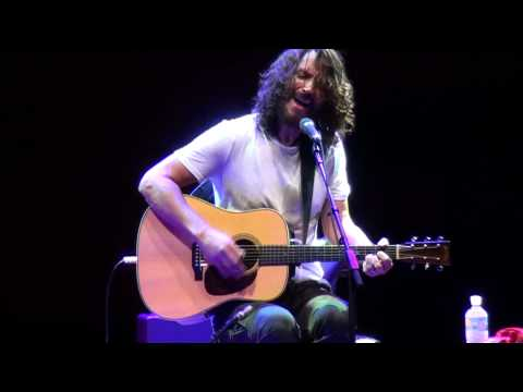 Chris Cornell - Sunshower