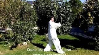 Curso De Chikung Taichi Paso A Paso (clip 2)