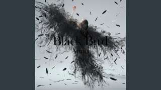Gambar cover Black Bird