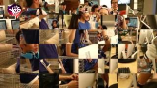 Video Angelababy現身網吧組團打遊戲 操作嫺熟引讚歎 download MP3, 3GP, MP4, WEBM, AVI, FLV Desember 2017
