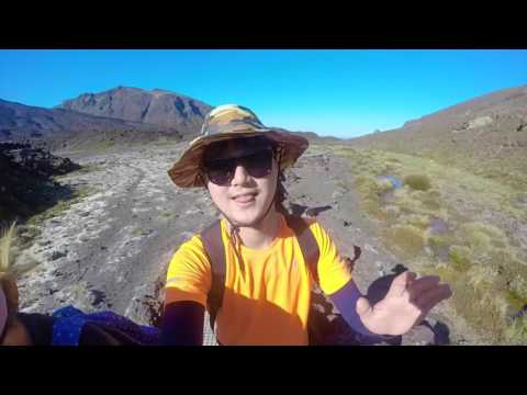 Working Holiday in New Zealand 2016