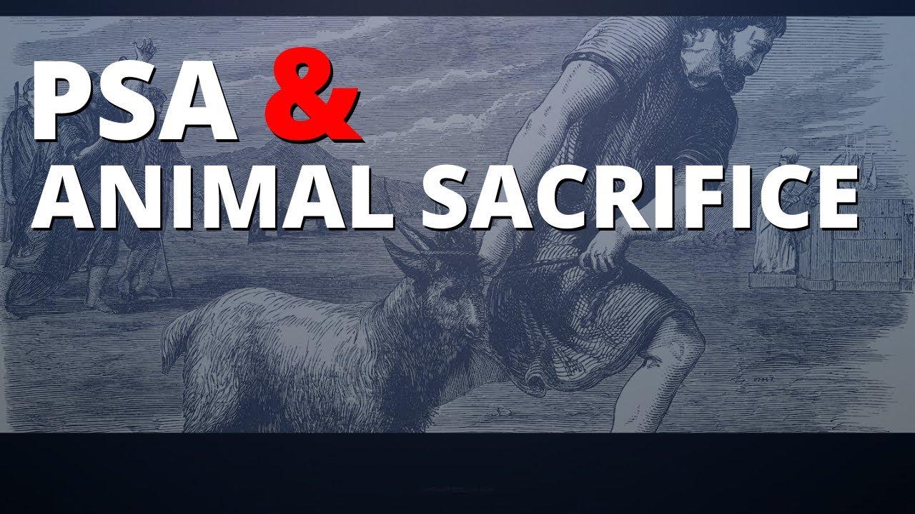 God Demanded Animal Sacrifice For Forgiveness?