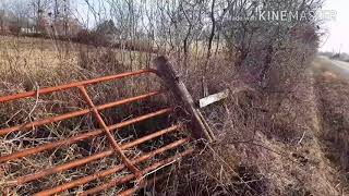 Owning land FIRST thing to do! Project 211 VLOG 02-08-16