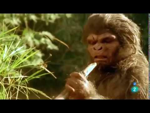 Los orígenes de la Humanidad - 2- Homo Sapiens - La conquista del mundo