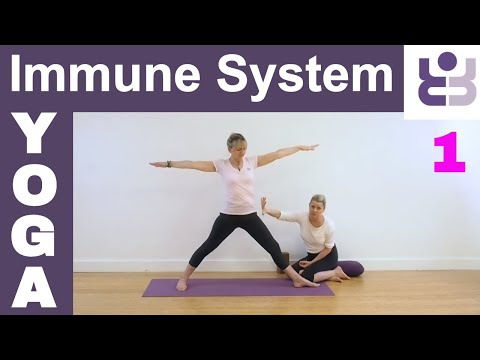 Yoga For The Immune System 1 - Iyengar Yoga