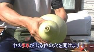 ひょうたんの作り方