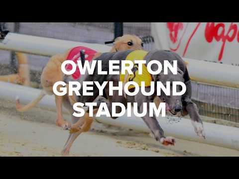 Owlerton Greyhound Stadium - Sheffield's Top Night