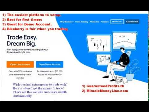 best-forex-demo-account-for-beginners