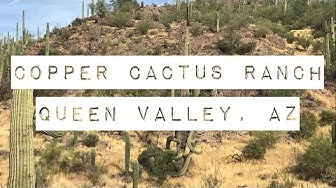 Road Trip 2019 (19) Copper Cactus Ranch | Queen Valley AZ
