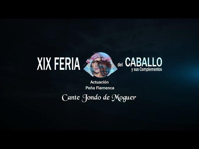 Feria del Caballo 2020: Peña Flamenca de Cante Jondo de Moguer