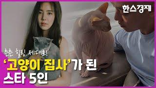 '유아인 집 고양이' 등 고양이 집사가 된 스타 5인