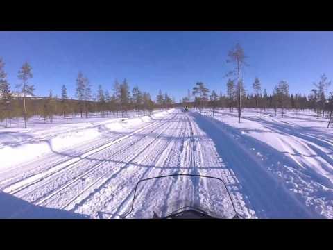 Snowmobile Levi Tease