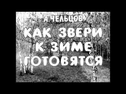 Диафильм А.Чельцов -  Как звери к зиме готовятся
