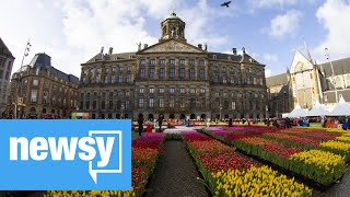 Netherlands' flower sector suffering
