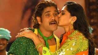 Don Telugu Movie || Dhada Puttistha Song With lyrics ||  Nagarjuna,Anushka