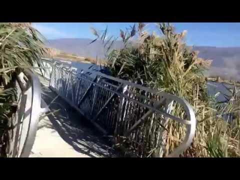 Vlog: Centerville, Utah; landfill; watershed; waterfowl hunting area; fishing; rosehips; bird clouds