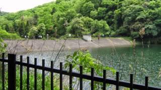 太田伸20150506四条畷室池園地