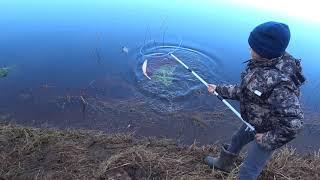 О таком клёве СЫРТИ можно только мечтать Рыбалка с фидером на ЛУГЕ