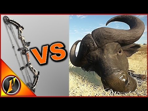 Africa VS Bow | TheHunter Call Of The Wild 2018