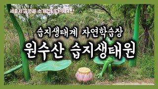 [세공소] 제4탄 원수산 습지생태원 | 원수산 | 습지…