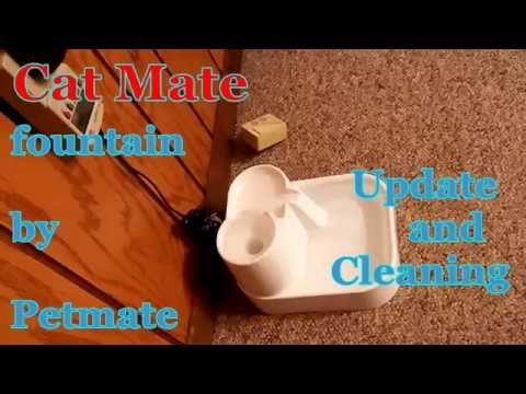 Cat Mate Pet Fountain - Update and Cleaning