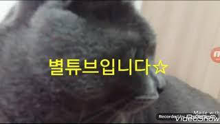 검은콩두유^^(귀요미주의)