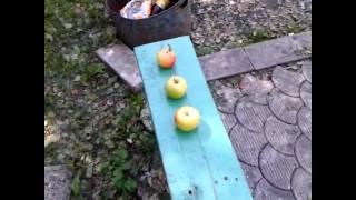 Прикол с яблоками