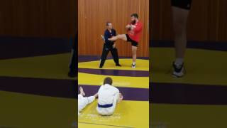 Tri-City Training Takedown Seminar - Single Leg Variations