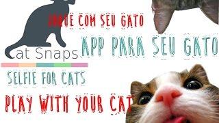 App Cat Snaps - Seu Gato Tirando Selfies