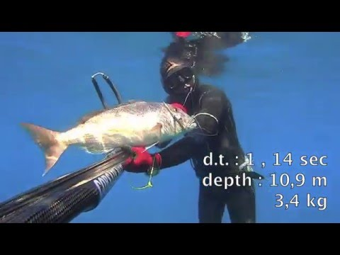 Spearfishing dentex from 8 to 20 meters …