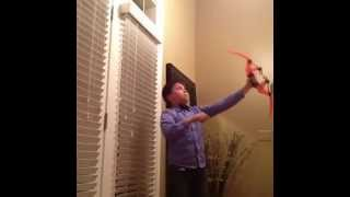 My Life In A Vine - Arrow Gone Wrong