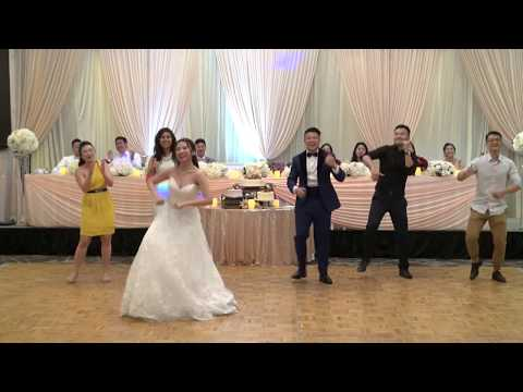 Just Dance At The Wedding Reception - YMCA