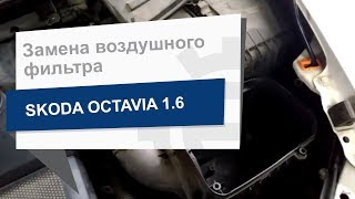 Замена воздушного фильтр двигателя WIX WA9756 на Skoda Octavia