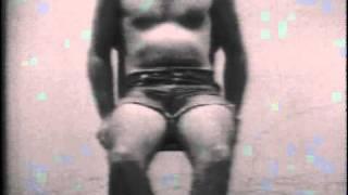 William Wegman - Stomach Song