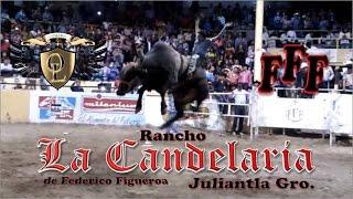 Rancho La Candelaria (FFF) en Tlajomulco De Zúñiga, Jalisco 2015