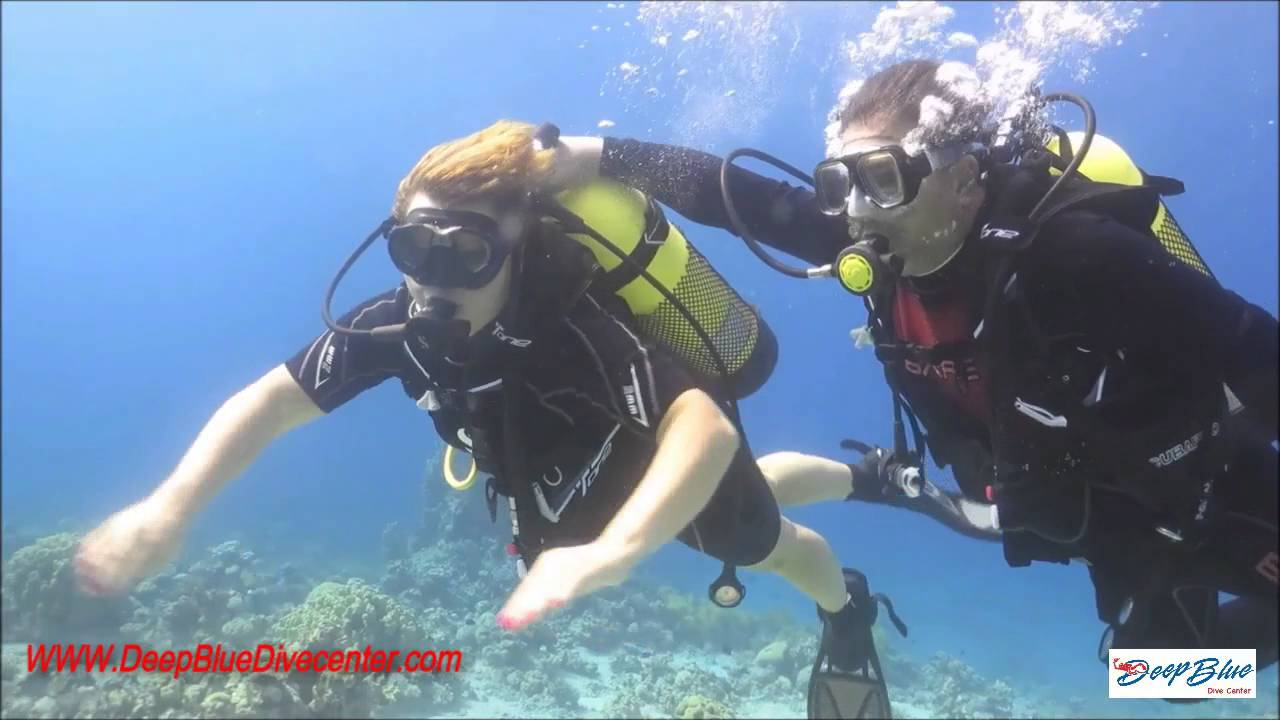Diving in aqaba red sea with deep blue dive center youtube - Dive center blu ...