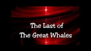 The Last of The Great Whales