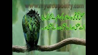 Ishq Urdu Design Poetry collection(http://a2zurdupoetry.blogspot.com/)