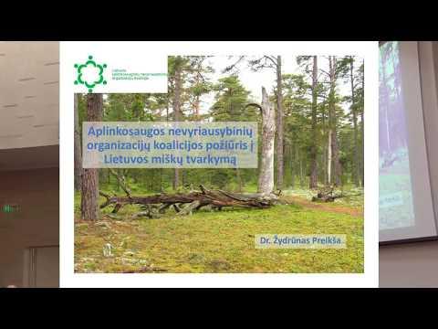 """Miškų genocidas: kuo pavojingas """"miškų valymas"""" ir sanitariniai kirtimai, saugomos teritorijos"""