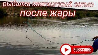 Рыбалка кастинговой сетью после жары Алтайский край река Чумыш