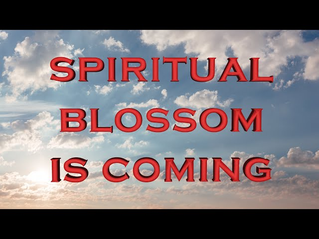 Spiritual blossom is coming (Eng subs)
