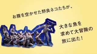 こまつ座 第112回公演・紀伊國屋書店提携 『十一ぴきのネコ』 【スタッ...