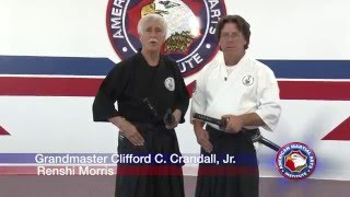 Takenouchi Hangan Ryu Matsuno Crandall Iaido and Batto 2