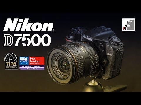 NIKON D7500  |  Ещё один художник