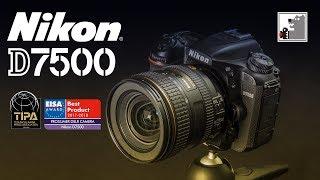 NIKON D7500 | Ще один художник